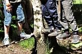 Kinder im Wald stehen auf Ästen