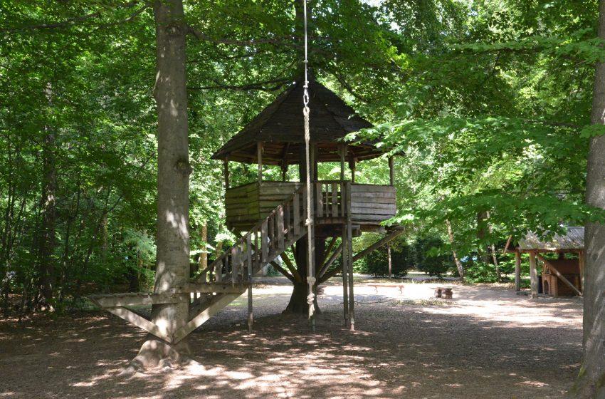Abenteuer-Tage im Stadtwald in den Sommerferien 2021