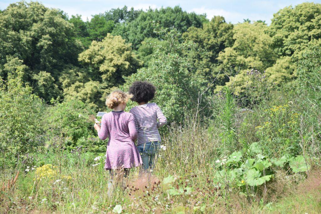 Zwei Mädchen suchen Kräuter und Pflanzen im dichtem Gebüsch.