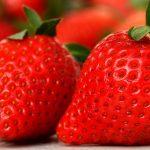 2 knallrote Erdbeeren. Bild von Alexandra A life without animals is not worth living auf Pixabay.