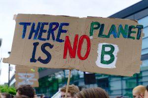 """Ein Schild auf einer Demonstration mit dem Text """"There is no planet B"""