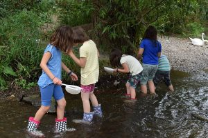 Fünf KInder waten im Fluss mit Sieben und untersuchen Wasser und Ufer.