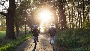 Zwei Kinder fahren zwischen Bäumen der Sonner entegegen.
